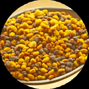 circular pollen